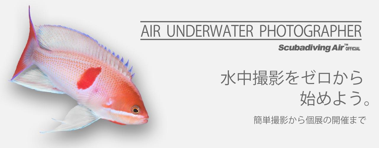 AIR水中撮影コース